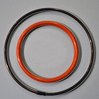 PTFE Encapsulated Rings